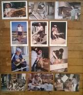 Lot De 12 Cartes Postales / MILLE ET UN TRAVAUX DE L'HOMME - Paysans
