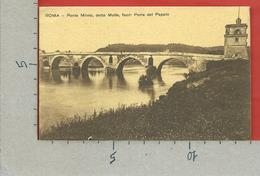 CARTOLINA NV ITALIA - ROMA - Ponte Milvio Detto Molle Fuori Porta Del Popolo - 9 X 14 - Ponts