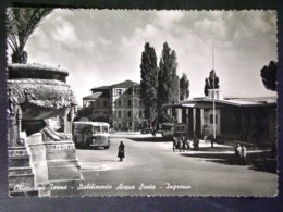 TOSCANA -SIENA -CHIANCIANO BUS -F.P. LOTTO N°250 - Siena