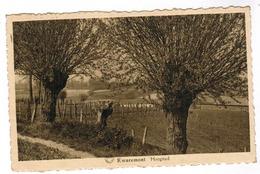 Kwaremont, Hoogstad (pk59368) - Kluisbergen