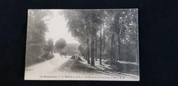 Cp 37 METTRAY LES BOURGETTERIES Le Calvaire Et La Route De La Gare  (  Attelage De Cheval ) - Mettray