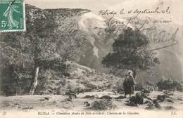 Algerie Blida Cimetiere De Sidi El Ghrib Chemin De La Glaciere Cpa Carte Animée - Blida