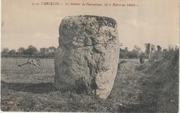 R : Manche :  CAROLLES :  Vue , Rocher , Menhir De  Vaumoisson - France