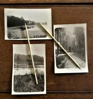 3stuks  Oude Originele Foto's  Van Site HET ZOET WATER  Dorp  OUD- HEVERLEE - Objects