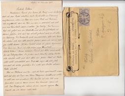 V1 - NEDERLAND 1921 - 2 X 10 Ct Auf Firmen-Brief Mit Inhalt, Gel.v. Leiden > Wien VI - Briefe U. Dokumente
