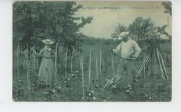 LA VIGNE EN BOURGOGNE - Le Paisselage  (carte écrite à FAUVERNEY En 1917) - France
