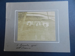 2.3) GRUPPO DI PERSONE SU PIROSCAFO SCRITTA NELL'OCEANO 1905 - Barche