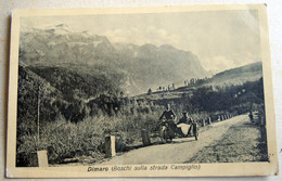Dimaro BOSCHI SULLA STRADA CAMPIGLIO - Trento