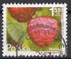 Polonia  2011 Sc. 4029 Lampone - Rubus Idaeus Used Poland Polska - Frutta