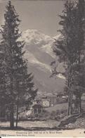 74 CHAMONIX MONT BLANC ENTREE DE LA VILLE PAR LA RUE VALLOT GLACIER DES BOSSONS Editeur  CHARNAUX FRERES 7052 - Chamonix-Mont-Blanc