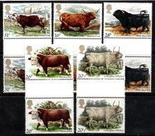 R458- GREAT BRITAIN. 1984 - SC#:1044-1048 - MNH - GUTTER PAIRS - NATIONAL CATTLE BREEDER'S ASSOCIATION - Vaches