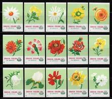 YUGOSLAVIA CROATIA OSIJEK Complete Set Of 15 Drava Matchbox Labels - Flower Series (light Green) - Boites D'allumettes - Etiquettes
