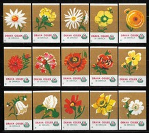 YUGOSLAVIA CROATIA OSIJEK Complete Set Of 15 Drava Matchbox Labels - Flower Series (dark Brown) - Boites D'allumettes - Etiquettes