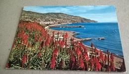 FUNCHAL VISTA LESTE  (267) - Açores