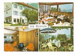 VEYRIER - LAC D'ANNECY / HOTEL LES ACACIAS - MULTIVUES - PROPRIETAIRE DURAND-MIEGE - Veyrier