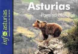 [MD3247] CPM - ANIMALI - ORSO PARDO - ASTURIAS PARAISO NATURAL - NV - Bears