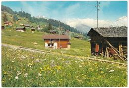 Les Mayens De Riddes - Valais / CH  Alt. 1500 M. - (VS) - VS Valais