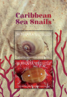 Bequia , Grenadines  Of St. Vincent 2019  Fauna Caribbean Sea Snails I201901 - St.Vincent & Grenadines