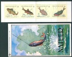 19/5 (4/4/1) Belgique Document Postal + Carnet Booklet XX  Timbres Neufs XX Peche Poissons Fish Vissen Perche Vairon - Fishing