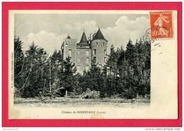CPA (Réf : U 834) Château De NOIRÉTABLE  (42 LOIRE) - Noiretable