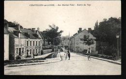 45, Chatillon Sur Loire, Rue Martial Videt, Entree Du Pays - Chatillon Sur Loire