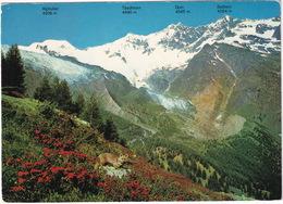 Mischabelgruppe Bei Saas-Fee 1800 M. ü. M. - (VS) - VS Valais