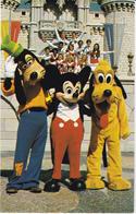 WALT DISNEY WORLD VILLAGE - GOOFY,MICKEY AND PLUTO - Disneyworld