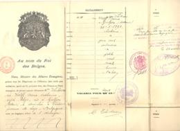PASSEPORT Belge Délivré à WAREMME En 1921 - Visa Des Pays-Bas (b250) - Historische Documenten