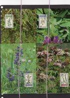 19/5 Liechtenstein 4 Cartes Maximum Card Plantes - Geneeskrachtige Planten