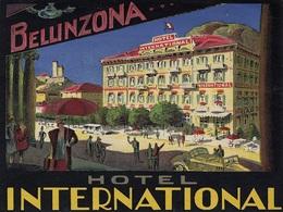 @@@ MAGNET - Hotel International Bellinzona Switzerland - Reclame