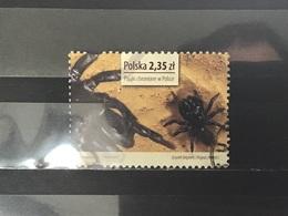 Polen / Poland - Spinnen (2.35) 2013 - 1944-.... Republiek