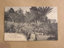 CAP D' ANTIBES Jardin De La Villa Eilen-Roc Département 06 Alpes Maritimes Carte Postale France - Antibes