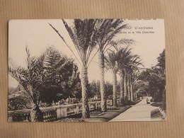 CAP D' ANTIBES Jardin De La Villa Eilen-Roc ( 2 )Département 06 Alpes Maritimes Carte Postale France - Antibes