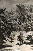 GABES...dans L Oasis   Voir 2 Scans   3  Timbres Au Dos - Tunisia