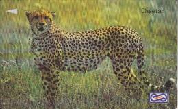 MALAYSIA(GPT) -  Cheetah, CN : 64USBB/B, Used - Malaysia