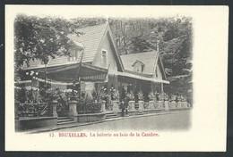 +++ CPA - BRUXELLES - BRUSSEL - La Laiterie Au Bois De La Cambre   // - Forêts, Parcs, Jardins