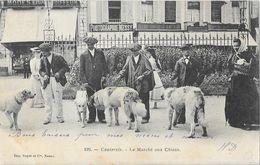 Cauterets (Hautes-Pyrénées) - Le Marché Aux Chiens - Imp. Royer Et Cie, Carte N° 192 Dos Simple - Cauterets
