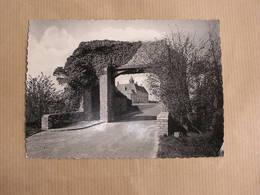 KOKSIJDE COXYDE St Idesbald  Ferme Expérimentale Ten Boogaerde Flandre Occidentale Belgique Carte Postale - Koksijde