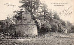 La Chaize Le Vicomte : Les Basses Prisons - La Chaize Le Vicomte