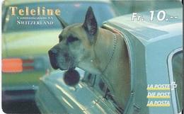 SWITZERLAND - TELELINE - DOG IN CAR - Suisse