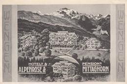 Wengen , Switzerland , 00-10s ; Hotels ALPENROSE & Pensions MITTAGHORN - Suisse
