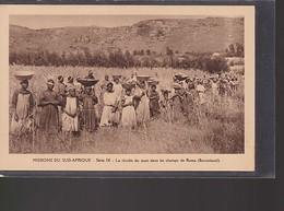 6 Cartes Missions Du Sud -Afrique     Cartes Vierges - Missions