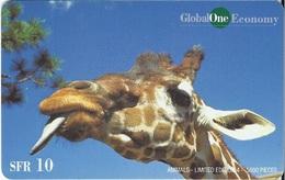 SWITZERLAND - GLOBALONE - ANIMALS - GIRAFFE - Svizzera