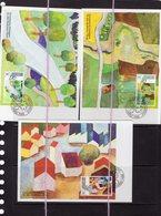 19/5 Liechtenstein 3 Cartes Maximum Card Protection De La Nature Environnement - Milieubescherming & Klimaat