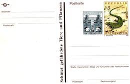 AUSTRIA 1993 POSTCARD With LIZARD.BARGAIN.!! - Andere