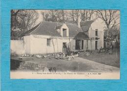 Sucy-en-Brie ( Val-de-Marne ). - La Ferme Du Château. - Les Poules. - Sucy En Brie