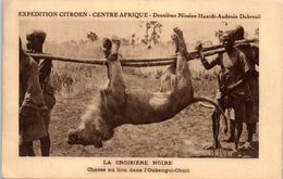AFRIQUE - CENTRAFRICAINE - Chasse Au Lion Dans L'Oubangui Chari - Central African Republic