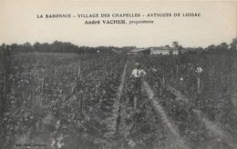 33 ARTIGUES DE LUSSAC LA BARONNIE VILLAGE DES CHAPELLES ANDRE VACHER - France