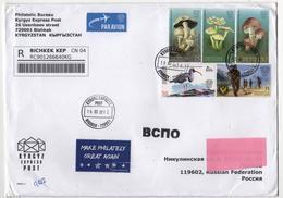 Registred  Letter From Kyrgyzstan To Russia 2019  Mushrooms Bird Birds Minesweeper - Pájaros