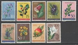Jugoslavia 1959 - Flora III          (g5625) - Nuovi